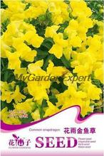 Hot Selling 60pcs Yellow Common Snapdragon Seed, Flower Seed, Bonsai Pot Plant Home Garden Free Shipping