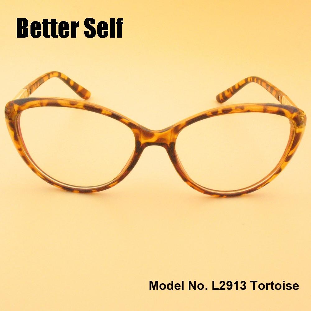 L2913-tortoise-front