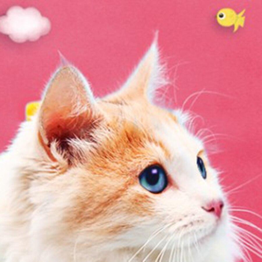 Pet Clothing Cats Dress Pet Clothes Cat Nurses Clothes For Dogs And Cats Animals Clothes Yorkies Cats Costume QQM1896
