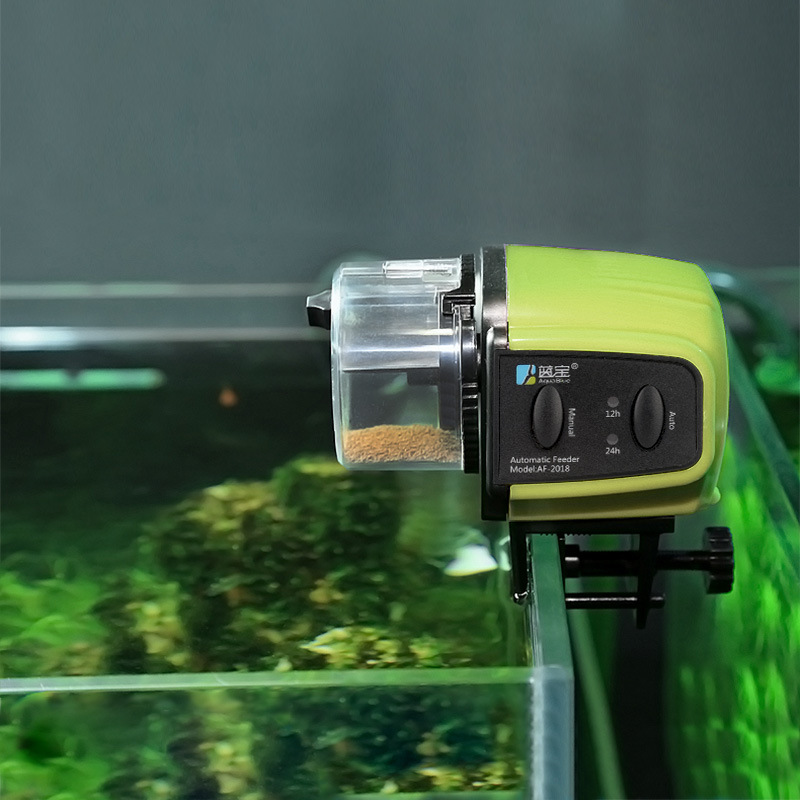 fish watch automatic fin feeder goldfish top auto corner youtube
