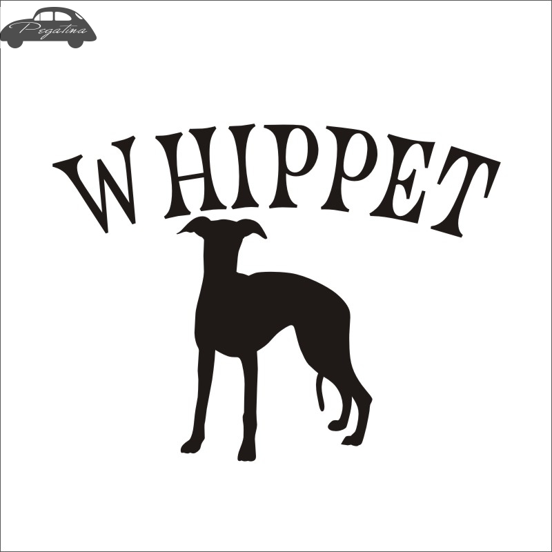 Car WHIPPET Car Pet Shop Sticker Dog Decal Posters Vinyl Wall Art Decals Pegatina Quadro Parede Decor Mural Pet Shop Sticker