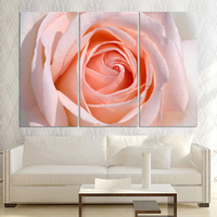 On Sale 3 Panel Pink Rose Flower Wall Paintings Modern Canvas Art Decor Picture Print Living Room Direct Factory Price!