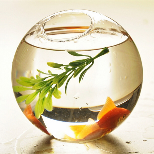 Decorative Fish Bowls Cool Oblique Open Glass Terrarium Aquarium Hanging Glass Globe Fish Bowl