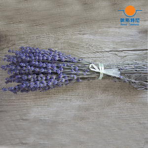 Image 3 - 100g dried natural flower bouquets dried natural Lavender flower bouquet&lavender flower Bunches