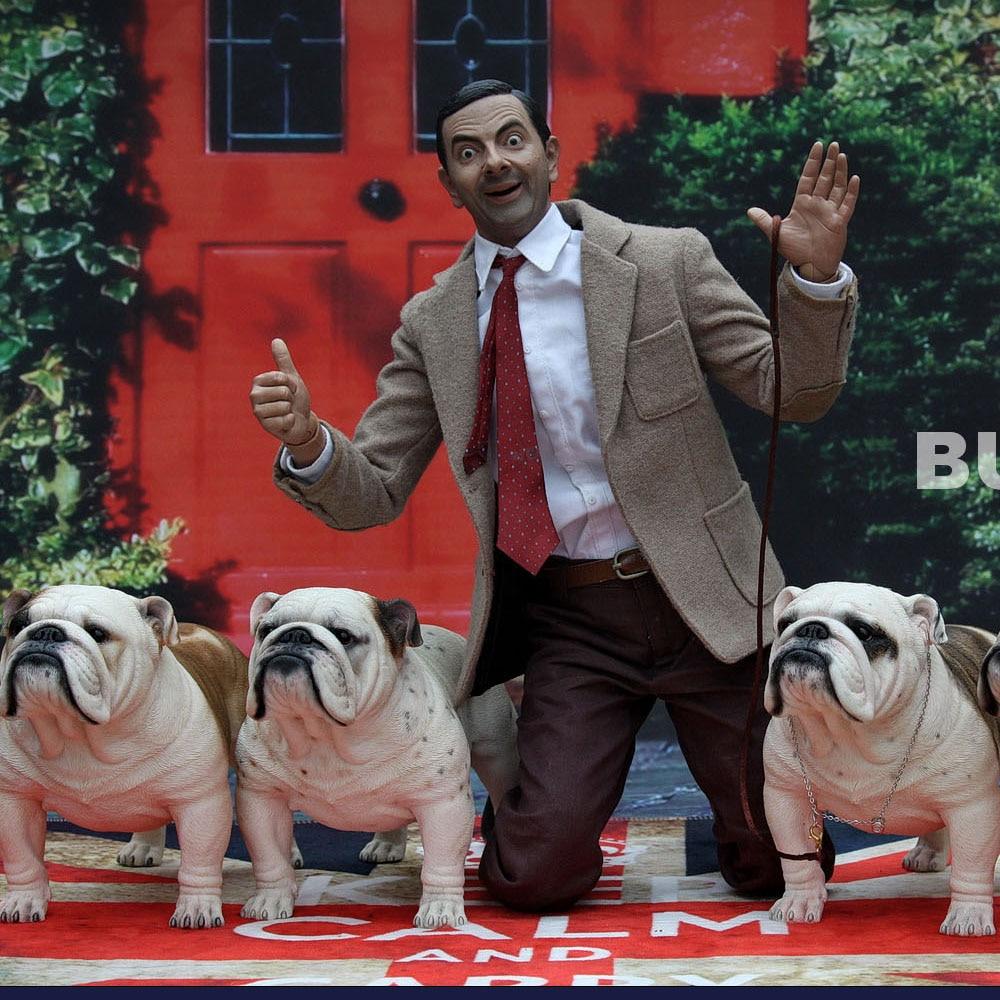 Mnotht 1 6 English Bulldog model Cute Animal Sculpt Model For 12in Action Figure Scene