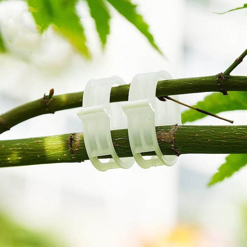 10 Unid / set Nueva Calidad Durable Plástico planta Clips Sujetador - Herramientas de jardín - foto 2