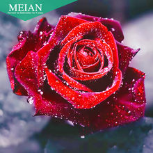 Meian,Full 5D DIY Diamond Painting,Flower Rose,Cross Stitch,3D,Diamond Mosaic,Needlework,Crafts,Diamond Embroidery,Gift,picture(China)