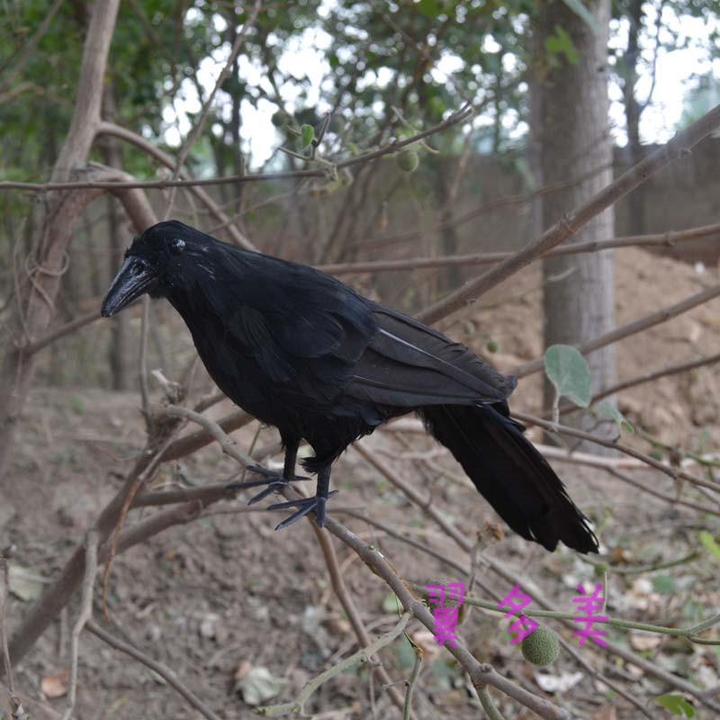 ღ Ƹ̵̡Ӝ̵̨̄Ʒ ღGran 30 cm plumas negro Cuervo pájaro modelo hecho a ...