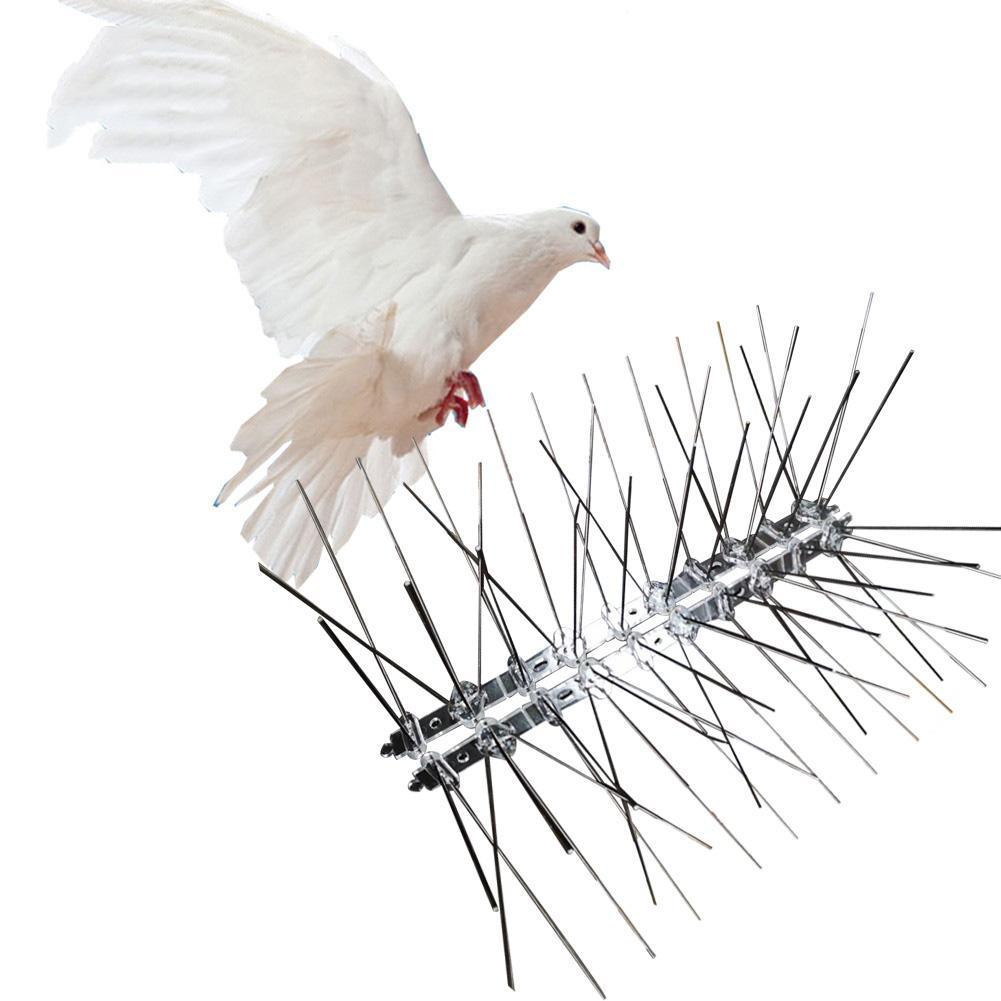 Bird Repellent Fence Spikes Pigeons Stainless-Steel Deterrent-Tool for Owl Small 25cm title=