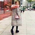 Desgaste do inverno Para Baixo Mulheres Jaqueta 2016 Outono E Inverno de Alta Qualidade Casacos de Inverno Parkas Outwear Feminino Longos Casacos Quentes