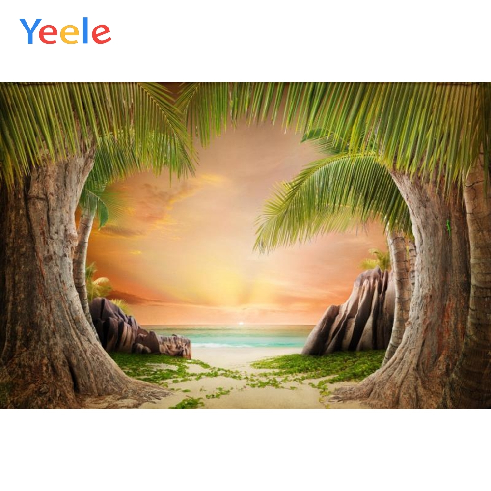 Yeele Old Palm Tree Cloudy Seaside Summer Scenic Photography Backgrounds Customized Photographic Backdrops For Photo Studio