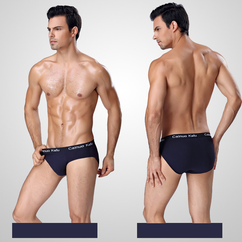 Image 5 - 5pcs/lot Men Briefs Comfy Model Sexy Underwear Solid Briefs Factory Men Bikini Underpants Panties Plus L 5XL 6XL (7XL=One Size)-in Briefs from Underwear & Sleepwears