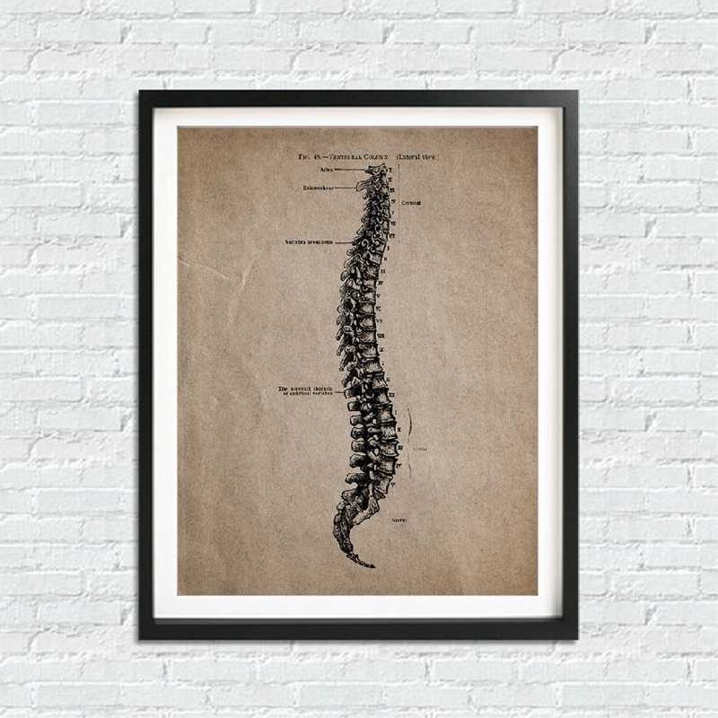 Anatomia humana esqueleto imprime e cartazes, anatômico crânio arte da parede pintura em tela posters vintage médico decoração de escritório