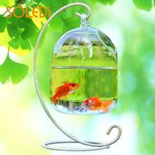 Креативная стеклянная ваза для аквариума, подвесная ваза для аквариума, украшение для аквариума, без полки