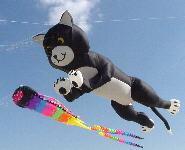 NEW ARRIVE 3D HIGH QUALITY 6M NYLON CLOTHE POWER CAT WINDSOCKS FOR PILOT / INFLATABLE KITES GOOD FLYING KITE FESTIVAL