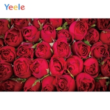 Yeele Bright Red Rose Flower Bloom Baby Party Girl Photography Backgrounds Personalized Photographic Backdrops For Photo Studio