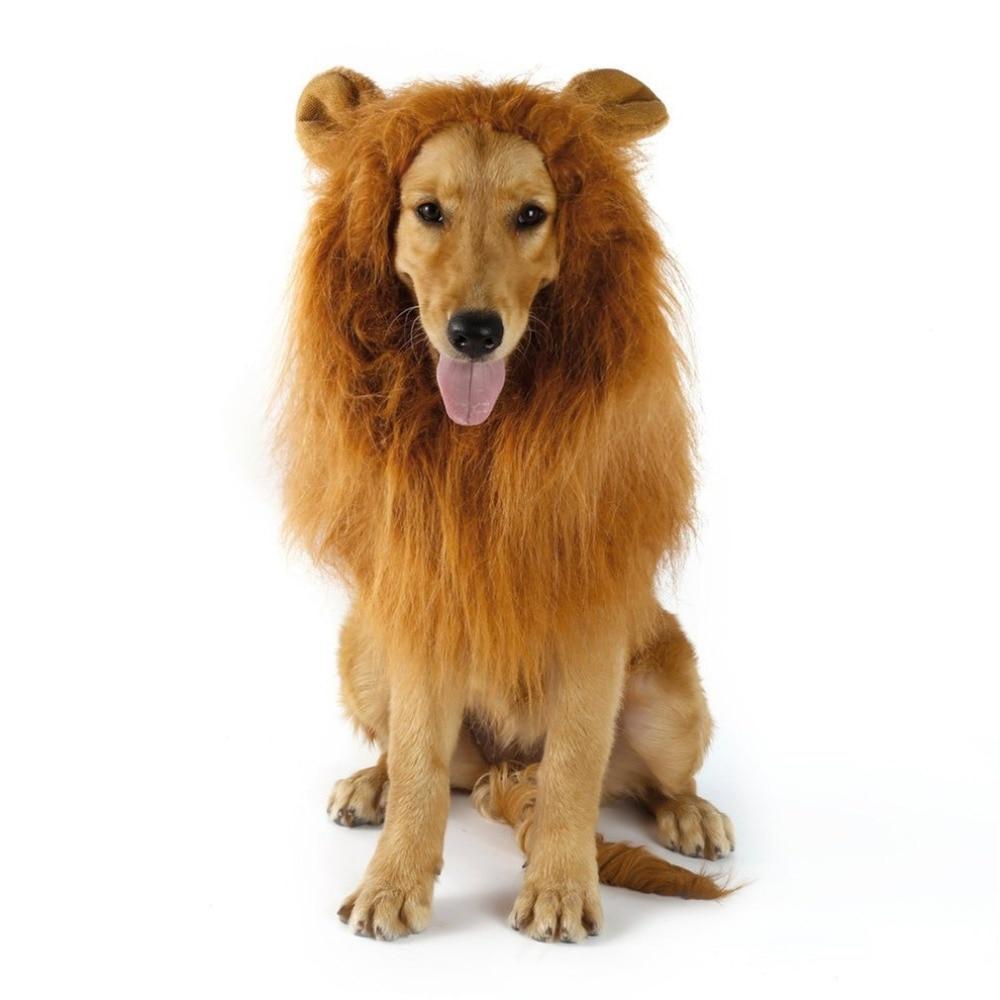 Detalle Comentarios Preguntas sobre Disfraces disfraz de mascota gato  Halloween ropa perros León melena peluca con orejas Festival vestido en  Aliexpress.com ... 20f284fced36