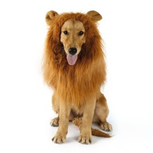 Fancy Dress Up Pet Costume Cat Halloween Clothes Dogs Lion Mane Wig With Ears Festival Dress Up