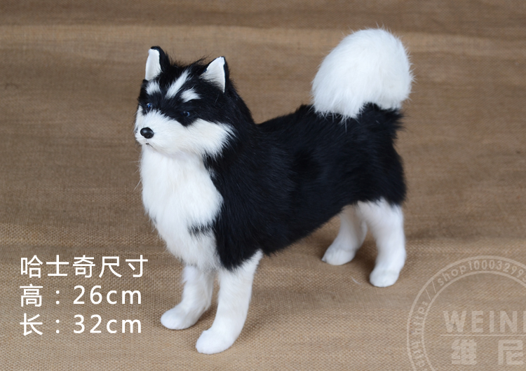 about 32x26cm sled dog black husky ,simulation husky model toy birthday gift a1947