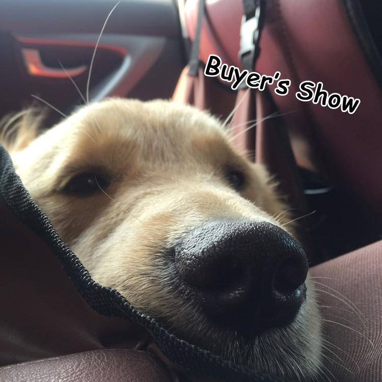 buyers_show_2