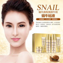 5Pcs Travel Size Snail Extract Skin Care Kits Hydrating Moisturizing Serum Lotion Toner BB Cream Eye Cream Gift