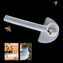 لوازم تربية النحل 10 قطعة أداة تغذية مدخل عسل النحل النحل معدات تربية النحل مريحة 2019 منتج