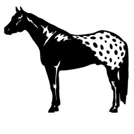 Animals Series Cool Handsome Horse Silhouette Wall Sticker ...