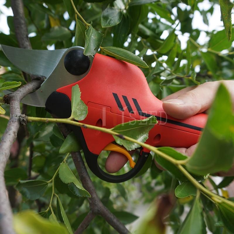 Le migliori forbici per alberi a batteria al litio (certificato CE - Attrezzi da giardinaggio - Fotografia 4