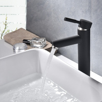 304 Stainless Steel Paint Spray Color Black White Taiwan Basin Wash Basin Faucet Kitchen Cooling Plate