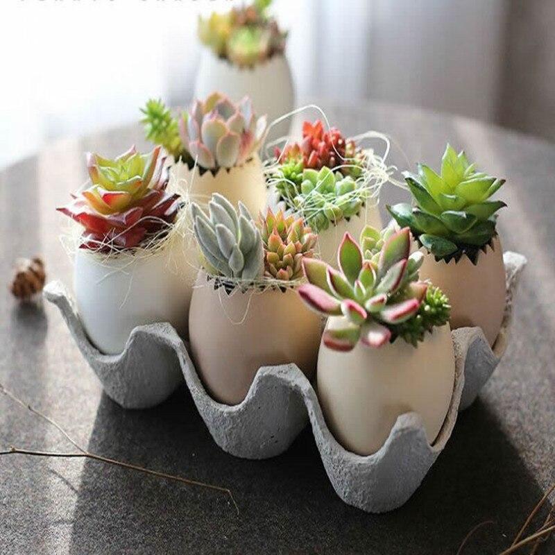 Créatif bricolage Oeuf Forme Vase 6 pièces Oeufs Et 1 pièces Oeuf Équipement Pour Plantes Succulentes Plantes D'intérieur Décoration 1 set
