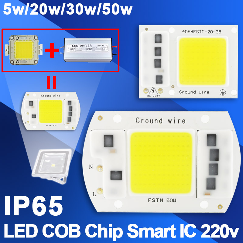 [DS] 10Pcs Cold/Warm/Grow COB LED Lamp IC Chip 5W 20W 30W 50W Chip Bulb LED 220V Smart Driver White LED Spotlight Floodlight DIY микросхема cm2801b led ic