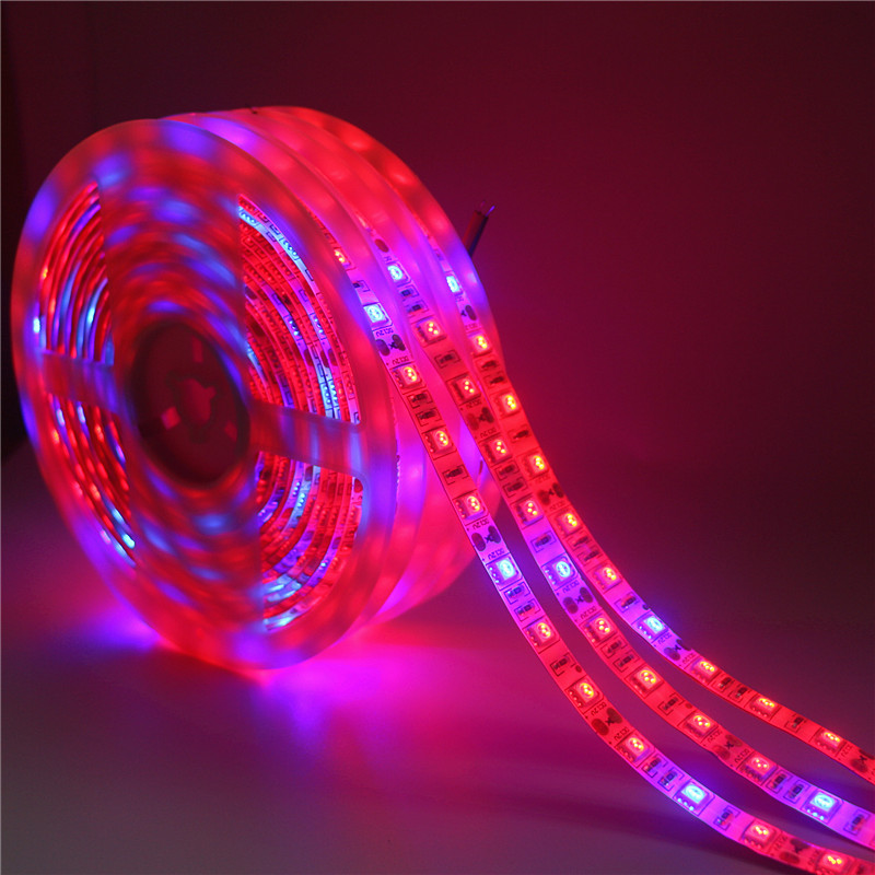 Us 0 73 35 Off Led Plant Grow Phyto Lamps Full Spectrum Led Strip Light Smd 5050 Chip Led Powerful Grow Lights For Greenhouse Hydroponic Plant In
