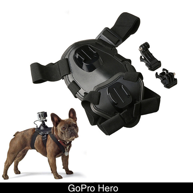 GoPro Dog Harness Sport Camera Elastic Band Back Chest Strap Belt for Small Large Dogs Outdoor_640x640 gopro dog harness sport camera elastic band back chest strap belt