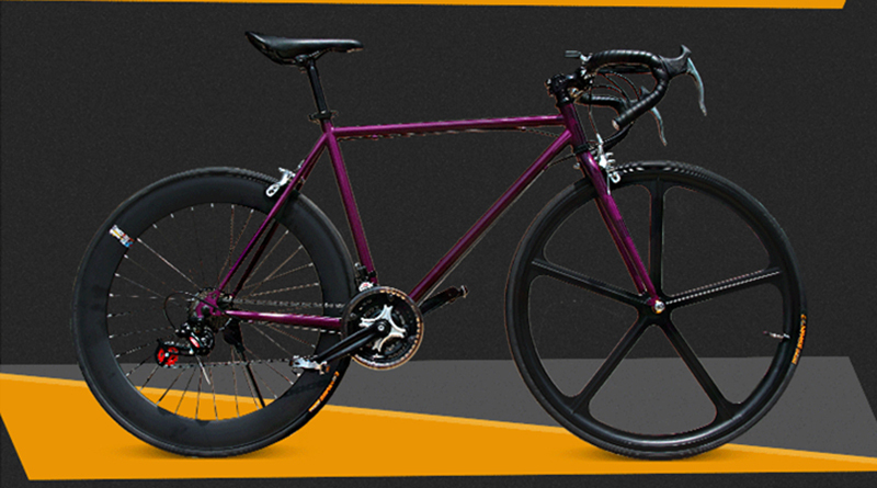 Fixed Gear Bicycle 2015 new Road bicyle 48cm 51cm 52cm steel frame ...