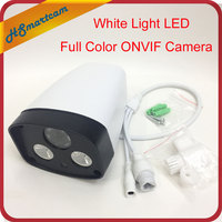 HD Network 960P IP Camera 2pcs Array White Light Leds Outdoor Waterproof Security CCTV ONVIF Full