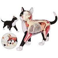 4D Cat модель здания Наборы в расчлененный CAT съемный прозрачный сборки 28 шт. 20 см перспектива обучения игрушки для детей