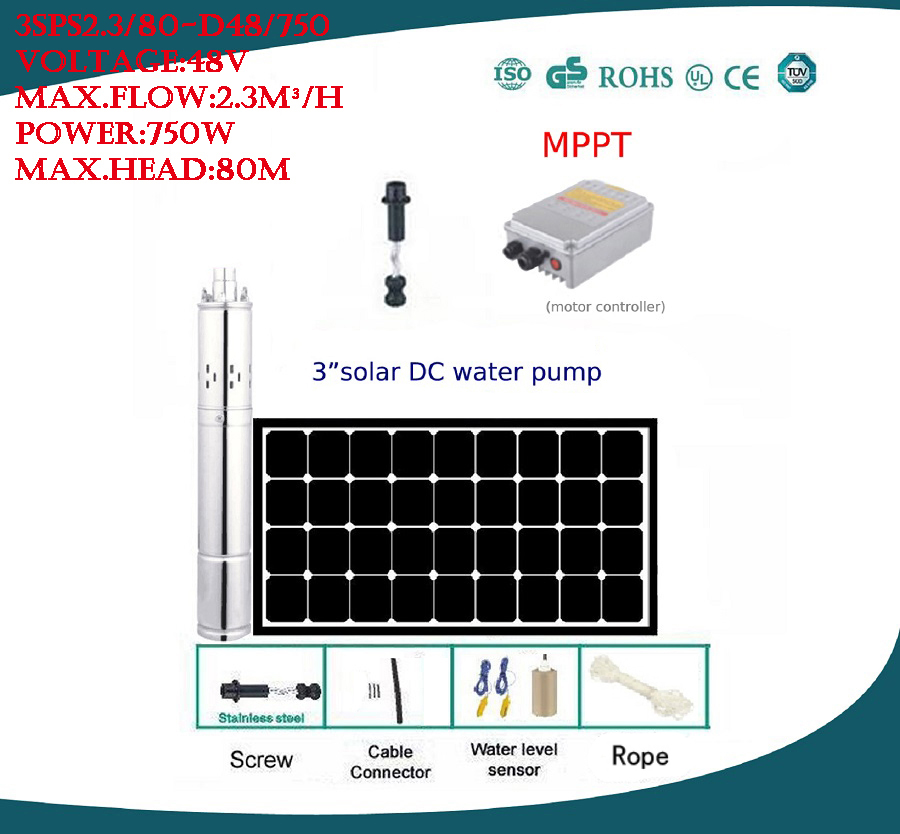 Free Shipping Factory Price 3 Inch DC48v 1HP Submersible Solar Pump For Solar Fountain Irrigation 3SPS2.3/80 D48/750