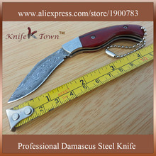 DS023  damascus steel sandalwood handle camping knife hunting knife faca