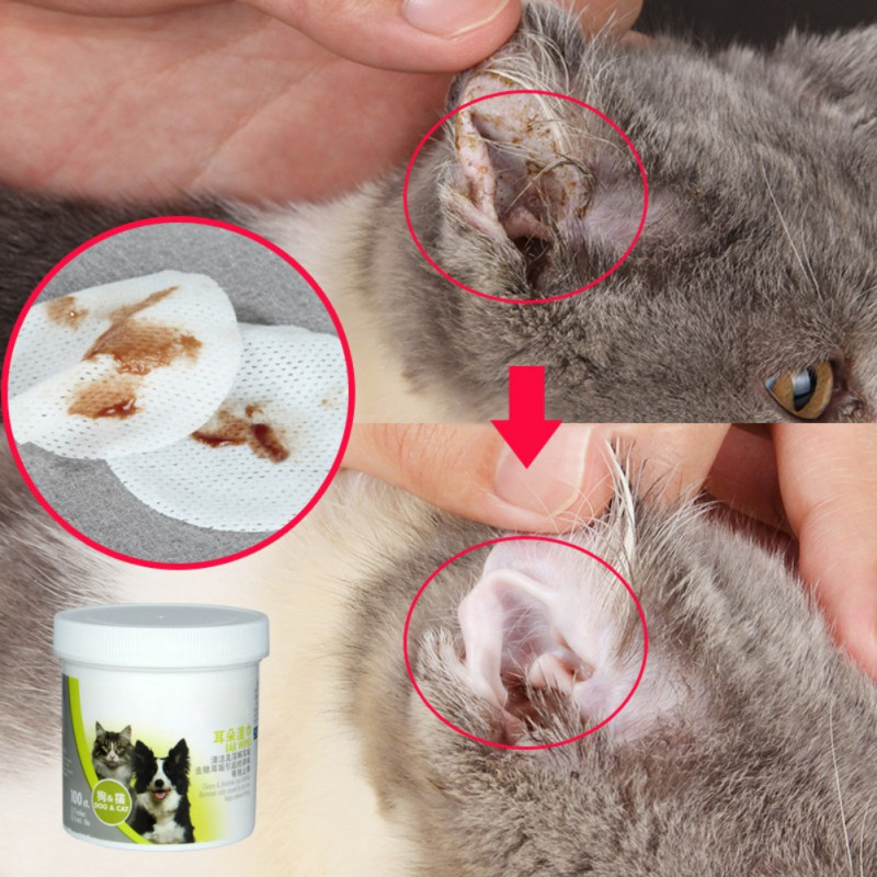 New Pet Ear Cleaner Wipes For Dogs Stop Itching Gentle Cleaning Keep Hygiene 100 Pcs/lot