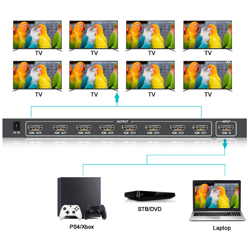 SGEYR 1x8 HDMI 2.0 Splitter UHD Splitter 4K@60Hz 4:4:4 HDR HDMI2.0 EDID HDCP2.2 18Gbps 1 in 8 out HDMI Splitter
