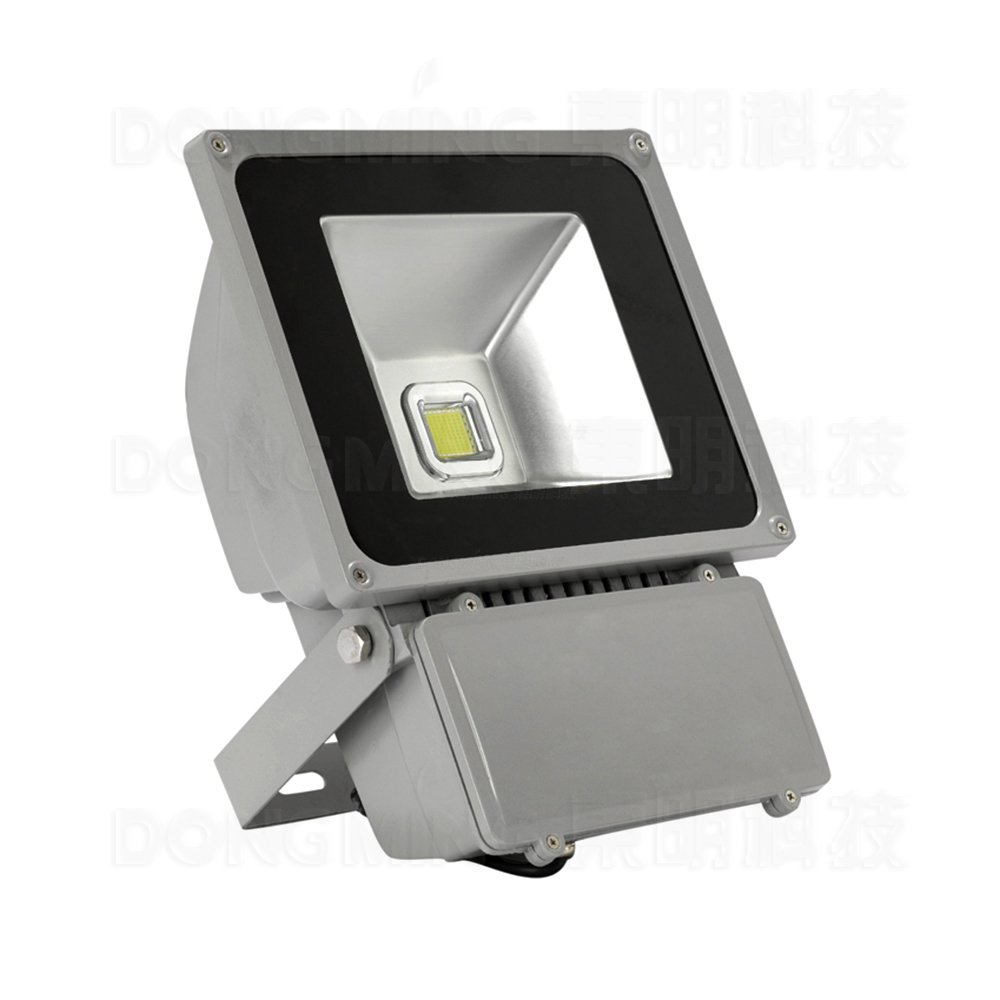 On Rgb Led Flood Light Bulbs Ac85 265v Spotlight 80w Outdoor White Ip65 Waterproof 6500lm 100pcs In Floodlights From Lights