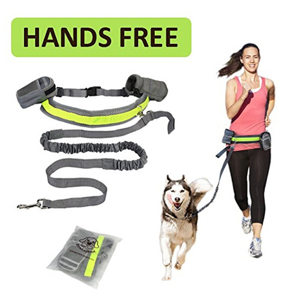 Hands Free Pet Dog Cat Running Jogging Padded Waist Belt Reflective Strip Elastic Leash Perfect Walking Training Dog Leash Set