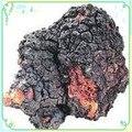 Suplemento nutricional Cogumelo Chaga Extrato Solúvel Em Água 1 kg