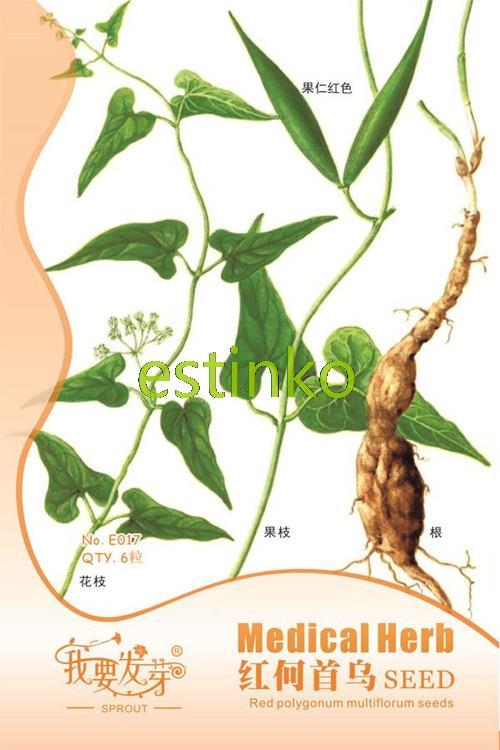6pcs/bag Tuber Fleeceflower Root Seeds Polygonum Multiflorum Seeds Perennial Twining Vine Variety Random Delivery