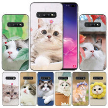 Cute pet cats Silicone Case Cover for Samsung Galaxy A50 A80 A70 A60 A40 A30 A20 A20e A10 A9 A8 A7 A6 Plus 2018 Note 8 9(China)