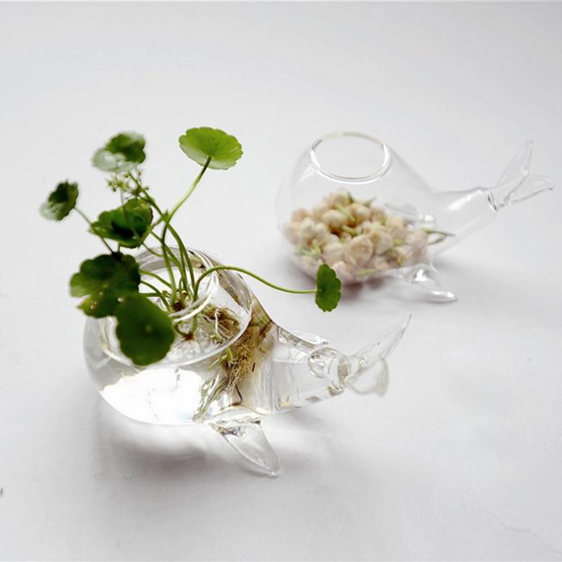 2014 freies verschiffen neue kreative glasvase hydroponischen whale fleisch mehr moos micro landschaft vase blumentopf