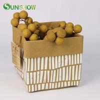 2pcs Kraft Storage Bag Fruit Flowers Pot Home Sundries Decor Children Room Toys Organizer Clothing Kraft Rangement Stockage