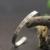 Personalizado Gravado Manguito Pulseira de Prata Sólida Carimbado Longitude e Latitude Coordenar Bracelet & Bangles Homens Personalizado