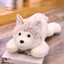 цена 1pc 60cm-110cm Cute Lying Husky Dog Plush Toys Stuffed Soft Dog Animal Pillow Cushion Kids Lovely Doll Girls Christmas Binquedos онлайн в 2017 году