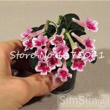1c2396c3ac Toptan Satış flower violet Galerisi - Düşük Fiyattan satın alın ...